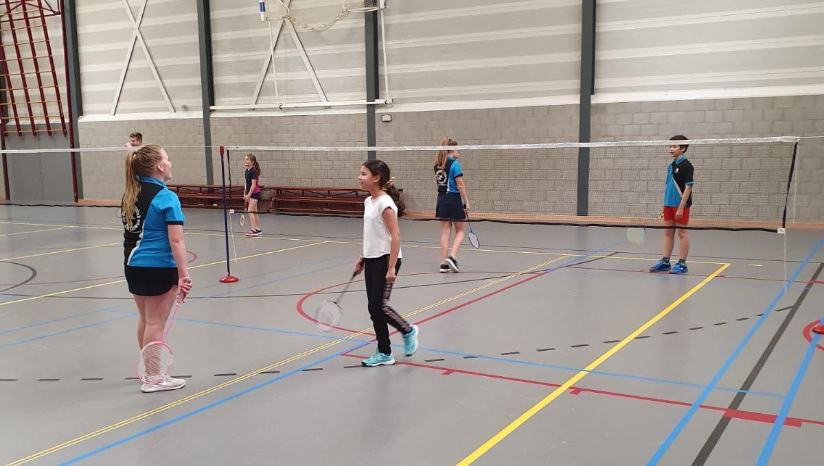 Zomer badminton